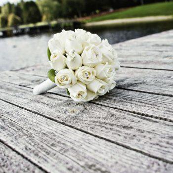 White-Roses3008 (1)